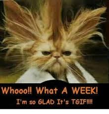Tgif Meme - whooo what a week i m so glad it s tgif meme on me me