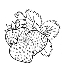 yummy strawberries fruit coloring page for kids fruits coloring