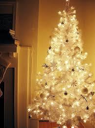 beautiful collection of gorgeous white christmas trees u2013 frikkin