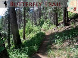 mt lemmon hiking trails map experience az butterfly trail