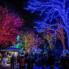 when do the zoo lights start the best holiday light displays events in washington dc
