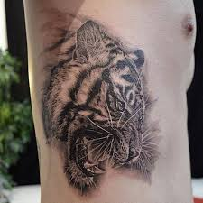 the 25 best tiger tattoos for men ideas on pinterest mens arm
