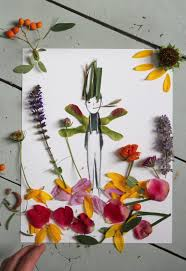mer mag make and decorate your own nature paper dolls mer mag