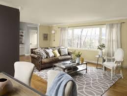 paint ideas for living room living room caling light led tv brown