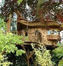 Tree House Home 78 Best Tree Houses U003c3 Images On Pinterest Treehouses