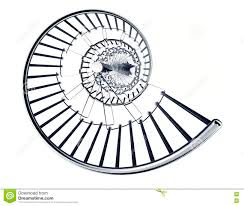 spiral staircase isolated on white background stock illustration