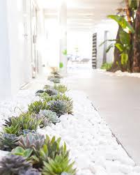 best 25 white pebbles ideas on pinterest pebble tile shower