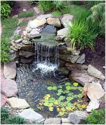 backyards charming backyard ponds outdoor ponds for sale