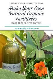 fertiliser for native plants the 25 best organic liquid fertilizer ideas on pinterest garden