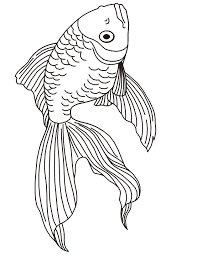 hd wallpapers goldfish coloring pages 3dwallpaperswallhdc ga