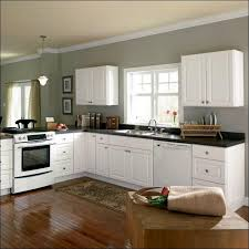 Overhead Kitchen Cabinets Kitchen Beautiful Kitchen Sink Without Cabinet Image Ideas Kitchens