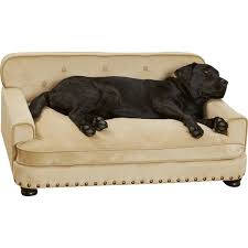 Sofa Bed For Dogs by Enchanted Home Pet Library Dog Sofa U0026 Reviews Wayfair