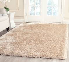 4 X 5 Kitchen Rug South Beach Shag Rugs Champagne Colored Safavieh