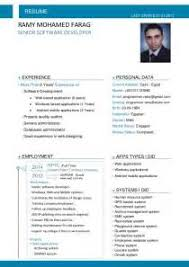 Resume Software Free Essays That Have Been Written About Cyber Bullying Resume Writing