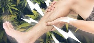 Muscle Spasms Versus Muscle Twitching by Can Cannabis Treat Muscle Spasms And Cramps Zamnesia Blog