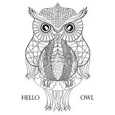 owl design zentangle detailed vintage owl with