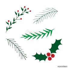 set mistletoe and leavy branches vector