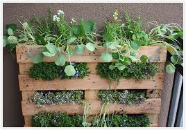 how to build an herb garden transformed hanging herb garden camille styles