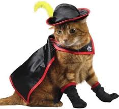 Musketeer Halloween Costume 23 Cats Halloween Costumes Holiday Existed
