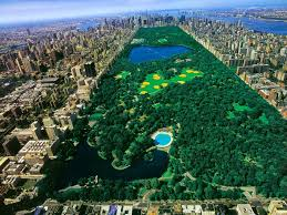 New York nature activities images Central park new york city travel activities tobias kappel jpg