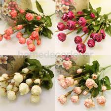 popular autumn blooming flowers buy cheap autumn blooming flowers