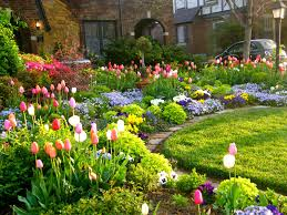 tulip season front yard garden curb appeal flowers spring