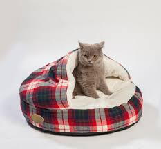 Hooded Dog Bed The Nicest Baskets Pillows And Blankets For Your Cat Or Dog
