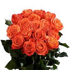 roses wholesale globalrose fresh wholesale orange roses 75 stems