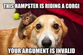 Meme Your Argument Is Invalid - livememe com hster riding corgi