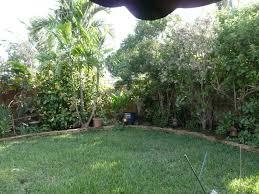 gardening south florida style november 2011