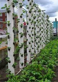 20 cool vertical gardening ideas 2017
