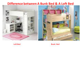 How Much Are Bunk Beds Bunk Beds Australia Bunk Beds Bunk Beds Bunk Beds Fantastic