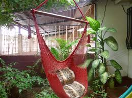 Hammock Hanging Chair Red Sitting Hammock Hanging Chair Natural Cotton And Discovered