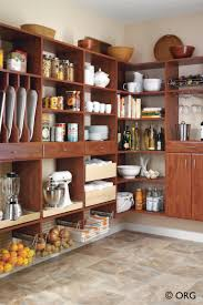 Kitchen Cabinet Pantry Ideas by Organizer Pantry Shelving Systems For Cluttered Storage Spaces