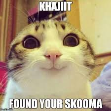 Khajiit Meme - smiling cat meme imgflip