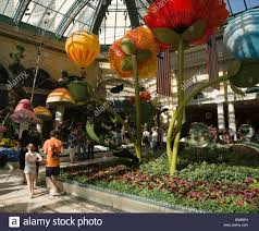flower garden in bellagio hotel las vegas nevada usa chinese