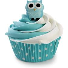 Owl Decorations by Amazon Com Wilton 710 6022 Owl Edible Icing Decorations Kitchen