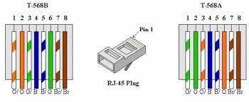 wiring a ethernet plug wiring diagram images database amornsak