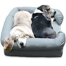big dog beds large dog beds for sale australia u2013 shinesquad