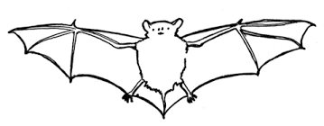bat coloring free printable coloring pages