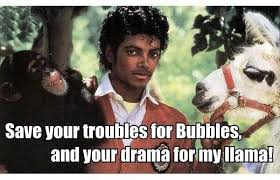 Bubbles Meme - missing my mj macros tinalicious