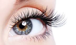 professional eyelash extension how do eyelash extensions work