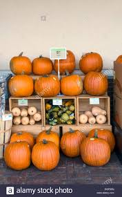 pumpkin and winter squash outdoor display at a publix grocery