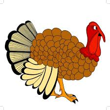 graphics for turkey thanksgiving day graphics www graphicsbuzz