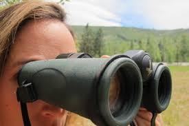 nikon travel light binoculars best binoculars for birding and hiking of 2018 outdoorgearlab