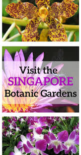 Types Of Botanical Gardens by 87 Best Travel Beautiful Gardens Images On Pinterest Beautiful