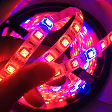 red and blue led grow lights 14w waterproof 5050smd led strip grow light red blue 7 for sale