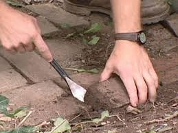 How To Fix Swollen Laminate Flooring How To Repair A Brick Walkway How Tos Diy