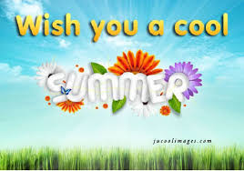 Image result for summer pic