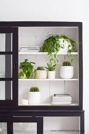 indie home decor 69 best plant life images on pinterest plants indoor plants